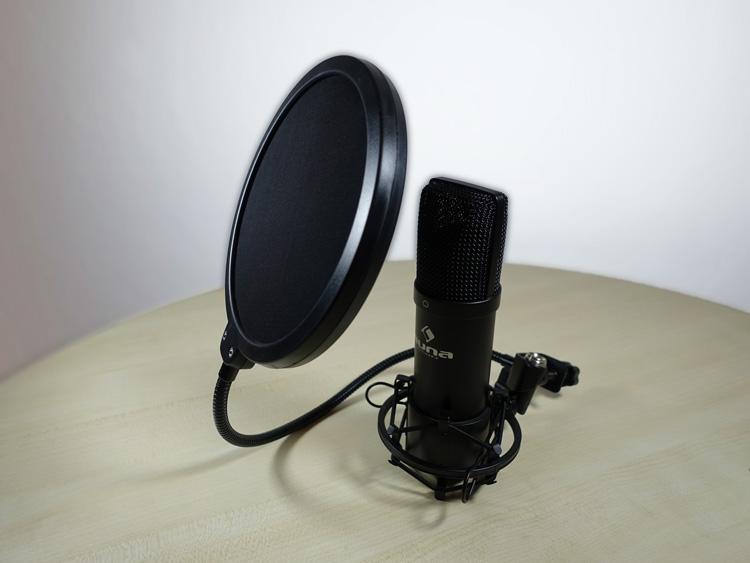Mikrofon mit Popschutz